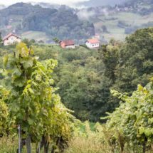 Zagorje region, Croatia | insimoneskitchen.com